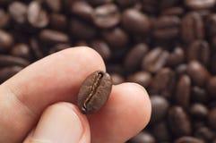 Tre dita che tengono il chicco di caffè con hanno offuscato altri fagioli sparsi dietro Fotografia Stock