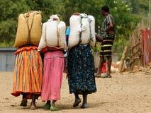 Tre donne stanno portando i sacchi sulla loro parte posteriore Fotografie Stock