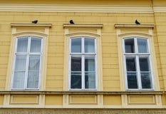 Tre duvor på tre fönster Arkivbilder