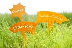 Tre etichette con tedesco Danke che i mezzi vi ringraziano su erba Fotografia Stock Libera da Diritti