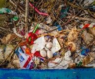 Tre Eurasian sothönaägg på ett rede som fylls med plast- och annat avfall royaltyfri fotografi