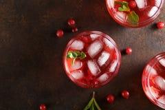 Tre exponeringsglas med uppfriskningsommartranbäret dricker på den rostiga bakgrunden royaltyfria bilder