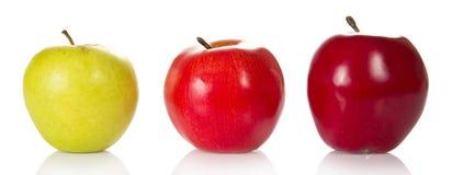 Tre färgglade äpplen av olika kvaliteter royaltyfria bilder