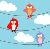 Tre fåglar Royaltyfri Foto