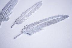 Tre försilvrar vingpennor royaltyfri bild