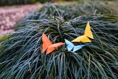 Tre farfalla sull'erba - lavoro di ufficio Fotografia Stock