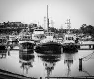 Tre fartyg i den Darwin hamnen Arkivbild
