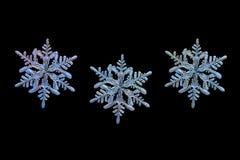 Tre fiocchi di neve isolati su fondo nero Immagini Stock Libere da Diritti