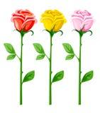 Tre fiori di rosa di vettore isolati su bianco Immagine Stock