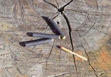 Tre firecrackers och match som ligger på en trädstubbe Arkivbilder