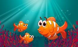 Tre fiskar under havet med koraller Royaltyfria Bilder