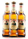 Tre flaskor av Birra Moretti Fotografering för Bildbyråer