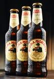 Tre flaskor av Birra Moretti Arkivfoton