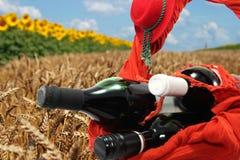Tre flaskor av rött vin i vetefält Royaltyfria Foton