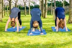 Tre flickor som står i en grundläggande yoga, poserar Arkivbild