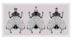 Tre flugor Royaltyfria Foton