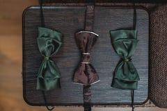 Tre flugor i brunt och mörker - grön färg på träplanka Royaltyfria Bilder