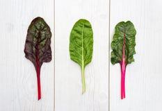 Tre foglie della bietola svizzera fresca su una tavola bianca Fotografia Stock Libera da Diritti