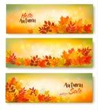 Tre foglie di Autumn Sale Banners With Colorful illustrazione vettoriale