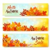 Tre foglie di Autumn Sale Banners With Colorful royalty illustrazione gratis