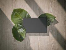 Tre foglie fresche e biglietto da visita nero rappresentazione 3d Immagine Stock Libera da Diritti