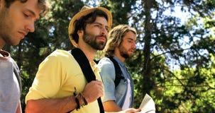 Tre fotvandrarevänner som går i skogen lager videofilmer