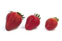 Tre fragole in una linea su bianco Fotografia Stock Libera da Diritti