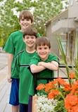 Tre fratelli nel verde Fotografia Stock Libera da Diritti