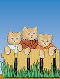 Tre gatti sulla rete fissa Fotografia Stock Libera da Diritti