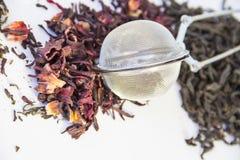 Tre generi di tè Immagini Stock Libere da Diritti