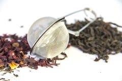 Tre generi di tè Immagini Stock