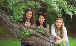 Tre giovani belle signore che posano nel parco Immagini Stock