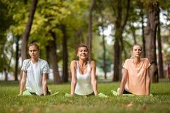 Tre giovani ragazze esili che fanno allungamento sulle stuoie di yoga su erba verde nel parco sull'aria aperta immagine stock libera da diritti