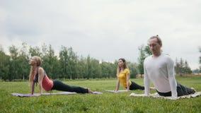 Tre giovani sportivi dei modelli praticano l'yoga nel parco video d archivio