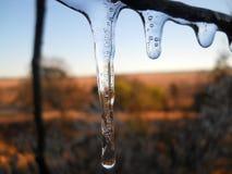 Tre gocce congelate Immagine Stock