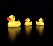 Tre gomma Duckies Fotografie Stock