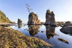 Tre gracerna på Garibaldi Oregon Coast Arkivbilder
