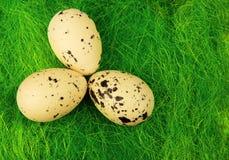 Tre grandi uova su erba verde, decorazione di Pasqua Immagini Stock Libere da Diritti