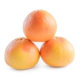 Tre grapefrukter som isoleras på vit bakgrund arkivbilder