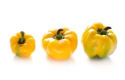 Tre gula peppar Royaltyfri Foto