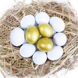 Tre guld- ägg bygga bo in Arkivfoto