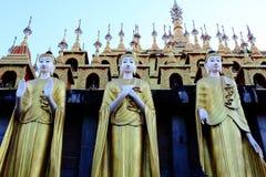 Tre guld- Buddhastatyer som framme står av pagoden och visar handsymboler i olik betydelse Royaltyfri Bild