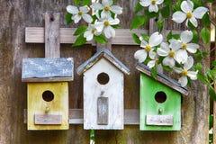 Tre gulliga lite birdhouses på trästaket med blommor arkivfoto