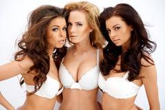 Tre härliga sexiga kurviga unga kvinnor Arkivfoto