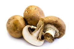 Tre hela bruna champignons och en skivad ‹för †som isoleras på vit bakgrund royaltyfri foto