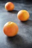 Tre hela mogna grapefrukter på mörk bakgrund Royaltyfri Foto