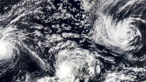 Tre Hurricanes, stormtromb, satellit- sikt Några beståndsdelar av denna video som möbleras av NASA arkivfilmer