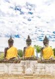 Tre immagini di Buddha Fotografia Stock Libera da Diritti