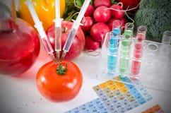 Tre injektionssprutor i röd tomat begreppsmat ändrade genetiskt Royaltyfri Foto