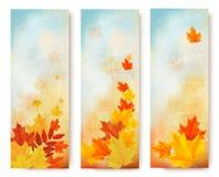 Tre insegne astratte di autunno con le foglie di colore Fotografia Stock Libera da Diritti
